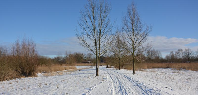 Winterweg bei Schnee