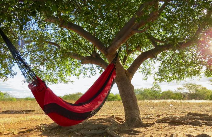 outdoor - Hängematte unter Baum , Jaime Dantas